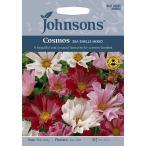 【輸入種子】Johnsons Seeds Cosmos SEA SHELLS MIXED ジョンソンズシード コスモス・シー・シェル・ミックス