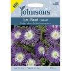 【輸入種子】 Johnsons Seeds Ice Plant STARDUST アイスプラント スターダスト ジョンソンズシード