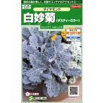 【種子】白妙菊(ダスティーミラー) ダイヤモンド サカタのタネ