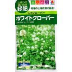 【種子】 ホワイトクローバー(シロクローバー) タキイのタネ