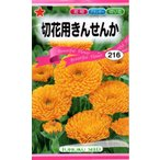 【種子】 切花用きんせんか トーホクのタネ