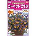 多花性で可愛い色合いの2色咲きビオラ!