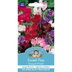 【輸入種子】 Mr.Fothergill's Seeds Sweet Pea Bouquet Mixed スイート・ピー ブーケ・ミックス ミスター・フォザーギルズシード