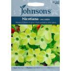 Johnsons SeedsNicotiana Lime Greenニコチアナ ハナタバコ  ライム グリーンの種