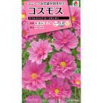 【種子】 コスモス ダブルクリック  ローズボンボン タキイ種苗のタネ