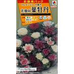 【種子】花壇向け 葉牡丹 F1フルメンバー お徳用パック タキイのタネ
