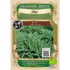 グリーンフィールド セージ   コモン セージ   小袋   有機種子 A021