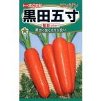 【種子】 ニンジン 黒田五寸 陽彩(ようさい) トーホクのタネ