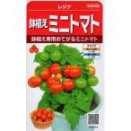 【種子】鉢植えミニトマト レジナ サカタのタネ