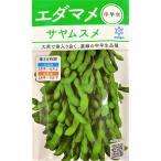 【種子】 枝豆(えだまめ) サヤムスメ 小袋 雪印種苗のタネ