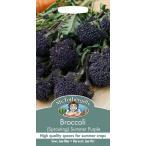 【輸入種子】 Mr.Fothergill's Seeds Broccoli (Sprouting) Summer Purple ブロッコリー サマー・パープル ミスターフォザーギルズシード