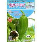 【種子】 辛コレ トウガラシ サルサ・デ・ウマイ トキタ種苗