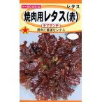 【種子】焼肉用レタス(赤) チマサンチ トーホクのタネ