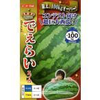 【種子】西瓜 でぇらいスイカ ナント種苗