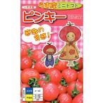 【種子】うす皮ミニトマト ピンキー ナント種苗