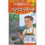 Yahoo!Gardener s shop Ivy【種子】 Gusto Italia バジル バジリコ・リモーネ トキタ種苗のタネ