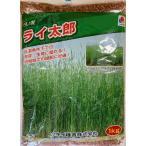 【種子】 超極早生らい麦 ライ太郎 お徳用 1kg入り大袋 タキイのタネ