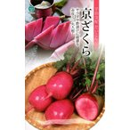 【種子】京ざくら だいこん 丸種のタネ