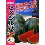 【種子】スイカ 3Xジルバ ナント種苗