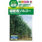 【種子】 ソルガム 緑肥用ソルゴー(60ml) タキイ種苗のタネ