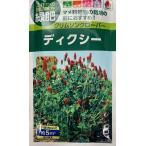 【種子】 土つくりの強い味方 緑肥 クリムソンクローバー タキイのタネ