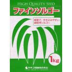【種子】 ファインソルゴー 1kg カネコ種苗のタネ