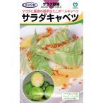 【種子】サラダキャベツ 丸種