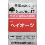 【種子 メール便不可】 緑肥用エンバク(えん麦) ヘイオーツ 1kg 雪印種苗