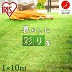 人工芝 ロール 幅1m×長さ10m リアル人工芝 芝丈30mm 芝生 国産 1m×10m 庭 DIY ふかふか 人工芝生 U字ピン16本付 IP-30110 : 予約品