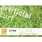 人工芝 ロール 2m×5m  芝 ガーデン ガーデンターフ 56743 リアル