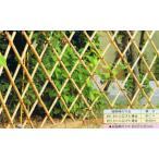 和風なお庭にピッタリの竹素材ちょっぴりコンパクトサイズ