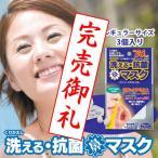 花粉99%以上カットの鼻に挿入するマスク くり返し洗える抗菌 マスクシェル レギュラーサイズ 3個入り (花粉対策鼻マスク) (CS-MSN-R01)