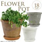 テラコッタ/植木鉢/陶器/白/フラワーポット/素焼き鉢 Φ18cm