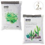 培養土 多肉 サボテン 葉っぱ 緑 成長 栄養 根腐れ防止 植物を元気にする土 evo soill 2L