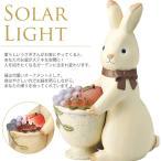 ソーラーライト ウサギ / 動物 / ガーデンライト / LED / 屋外 / ソーラーライト