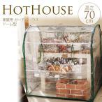 ミニ 温室 ビニール 家庭用ビニールハウス ドーム型 幅70×奥行50×高さ70cm