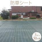 除草 雑草の育成を抑制 お庭 通路 イベント会場に 防草シート 3m×50m巻