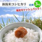 新潟県限定新潟米コシヒカリ白米3kg新潟産こしひかり新潟県の方は5%キャッシュバックキャンペーン