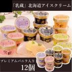 ショッピングアイスクリーム スイーツ ギフト 乳蔵 北海道アイスクリーム(プレミアムバニラ入り) 12個入り