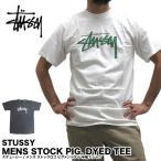 ショッピングstussy ステューシー STUSSY メンズ ストックロゴ ピグメント ダイ 半袖Tシャツ 1903982 (メール便対応)