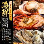 バーベキューセット 海鮮 BBQ セット ( ロブスター 半割4本 アワビ 3個 サザエ 5個 ホタテ片貝 10枚 マグロカマ2個 )