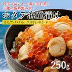 其它 - 人気商品! 「海童漬け(かっぱづけ)」(1個) ホタテ/いくら/つぶ/めかぶ/海鮮丼(五篤丸水産)