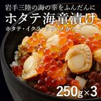 海童漬け かっぱづけ 3個 ホタテ いくら つぶ めかぶ 海鮮丼 (五篤丸水産) 家呑み おつまみ