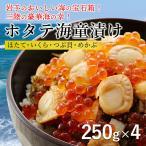 海童漬け かっぱづけ 4個 ホタテ いくら つぶ めかぶ 海鮮丼 (五篤丸水産) 家呑み おつまみ