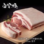 一流シェフも絶賛の豚肉「白金豚」/ 「松セット」  プラチナポーク(高源精麦)