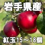 紅玉りんご15〜18個(約5kg) コウギョク こうぎょく べにたま 林檎 アップル パイ ジュース ジャム ケーキ