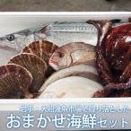 岩手・大船渡魚市場で競り落として直送「おまかせ海鮮セット」(マリンプロ)