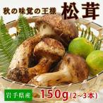 【数量限定予約販売】岩手県産「天然松茸150g(2〜3本)」 国産/まつたけ(戸塚商店)