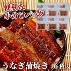 うなぎ 鰻 蒲焼 父の日 丑の日 直火焼き 3人前 100g×6枚 食べやすいサイズ