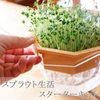Yahoo!ゲキハナ 初心者さんのお花屋さんスプラウト 栽培 キット 送料無料 珍しい種 オーガニック有機 自由研究